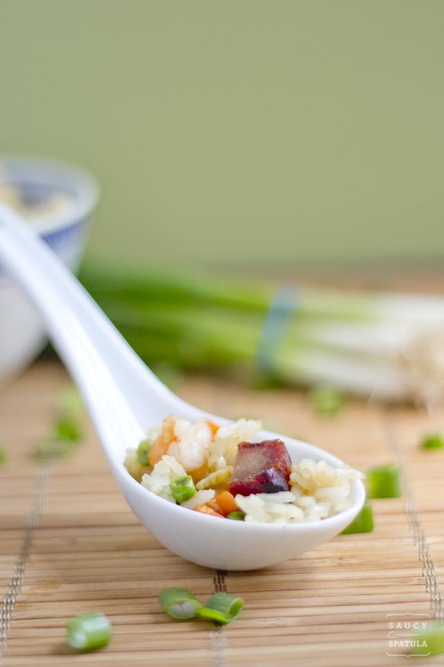 yeung-chow-fried-rice-close-up-2.jpg