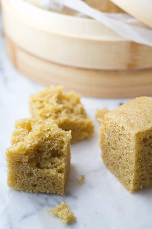 mah-lai-goh-malaysian-steamed-cake-closeup.jpg