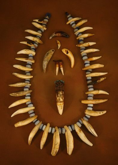A leopard- and lion-tooth necklace from the Congo. Pendant in the middle is a crocodile tooth.