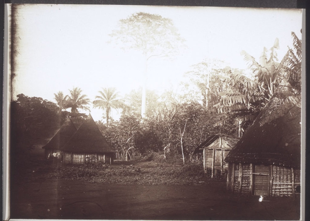 Village in the area of the Bakossi tribe, near Nyasoso in Cameroon, 1900. This village is likely a man with three wives.