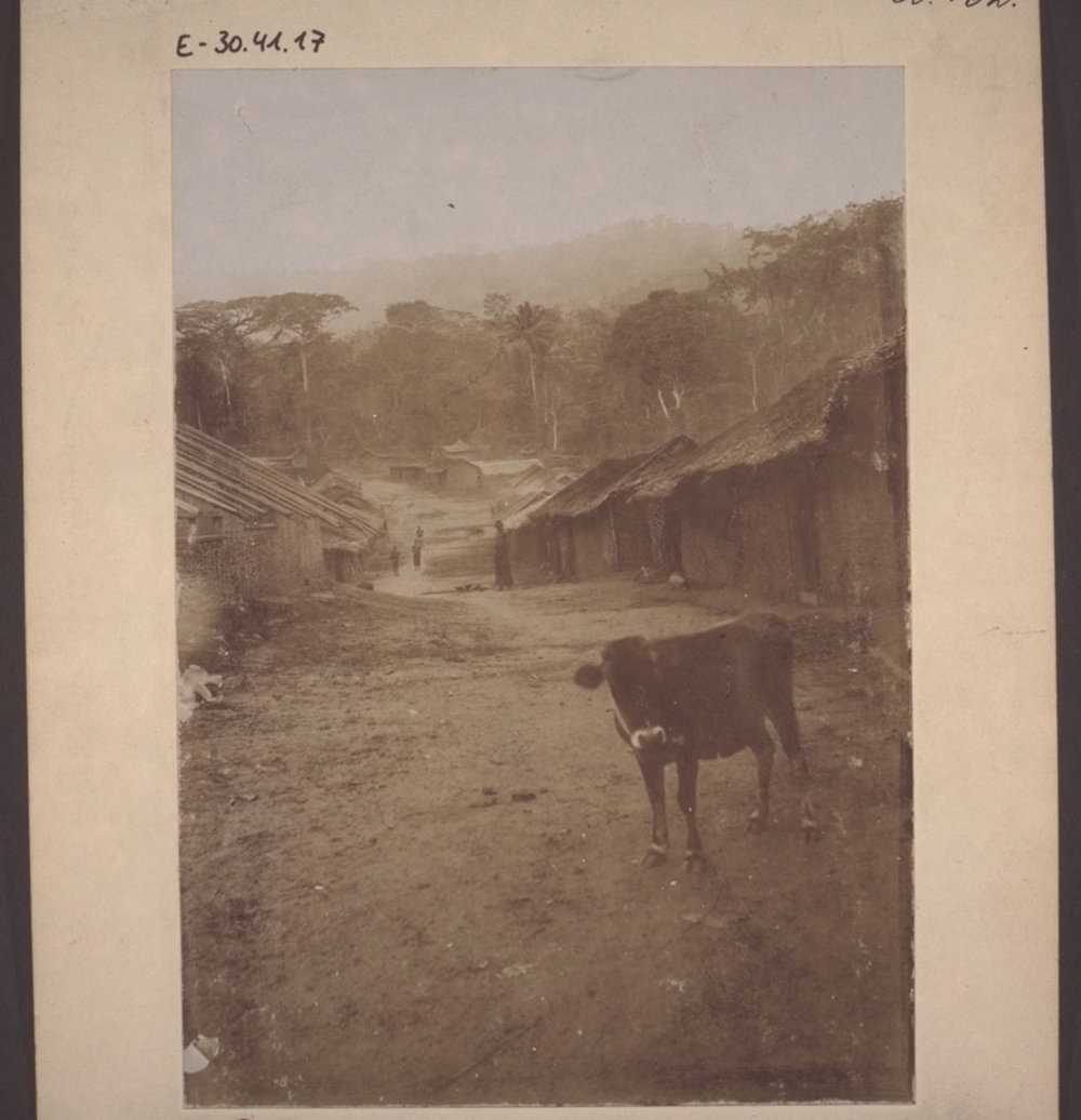 A village of the Barue tribe in Cameroon, 1896.