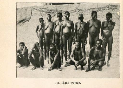 Photo from Cameroon from the Mecklenburg-Schwerin expedition of 1907/08.