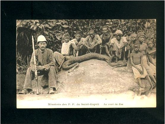 A python, a French missionary and locals in Gabon.