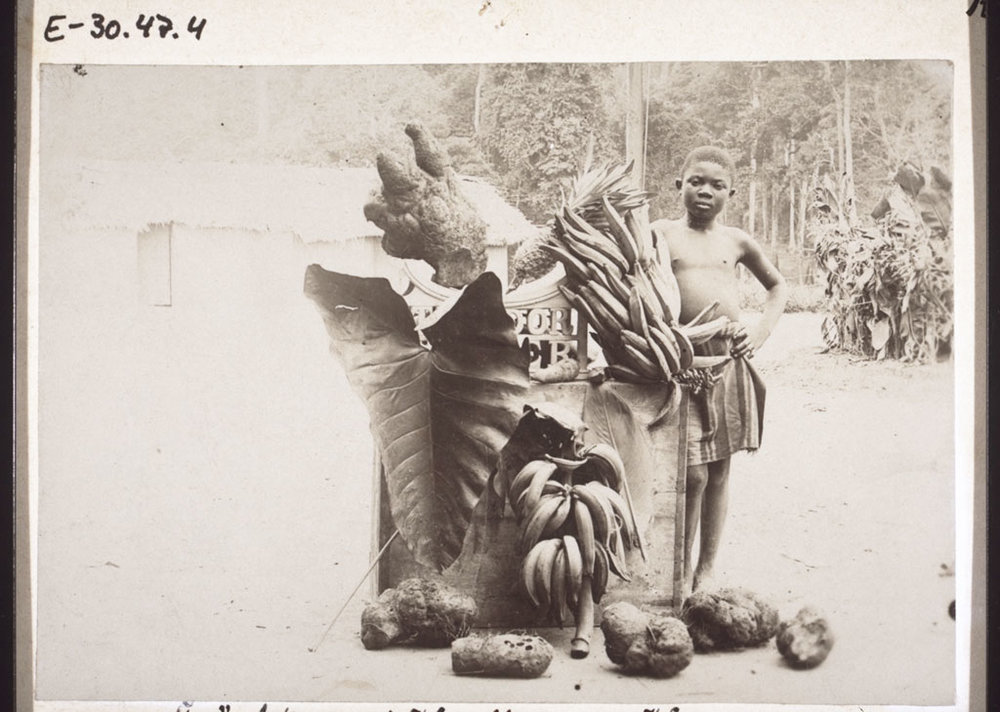 Fruits and root-vegetables in Cameroon, late 1890s.