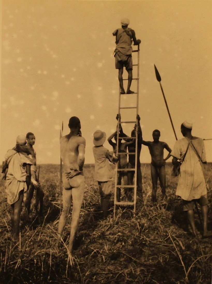 """""""That way."""" Central Africa, Unknown Photographer, 1928"""
