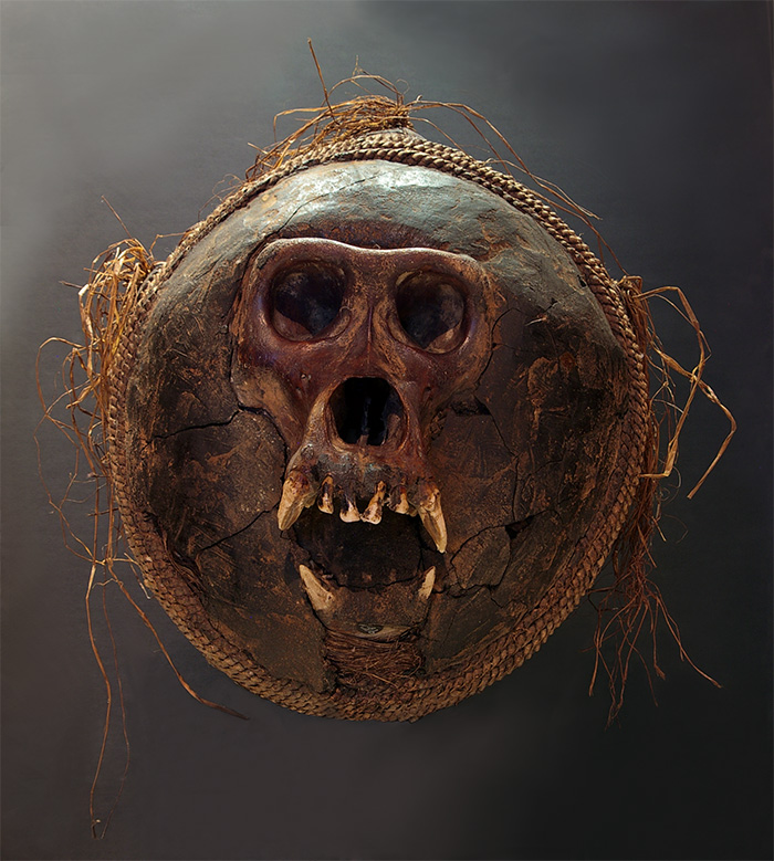 Another  nkisi bumba  of the Villi and Yombé peoples of Congo. It's a gorilla skull set in clay in a woven basket. This  nkisi  (magic charm) is used as a social regulator, therapeutic object and also as a trap to block evil spells.