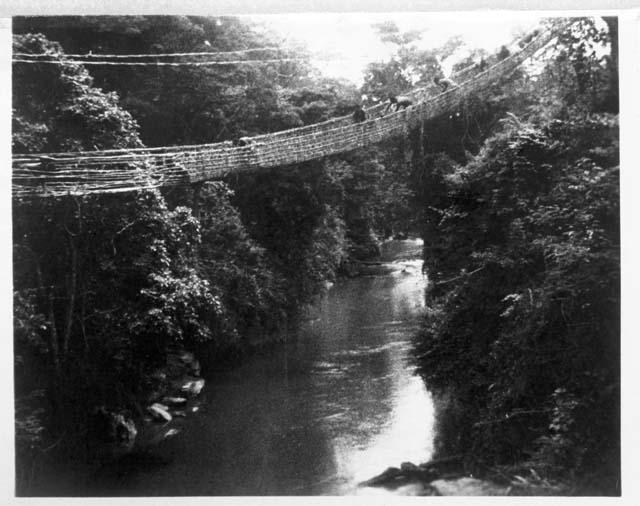 Pygmies weaving bridge.jpg