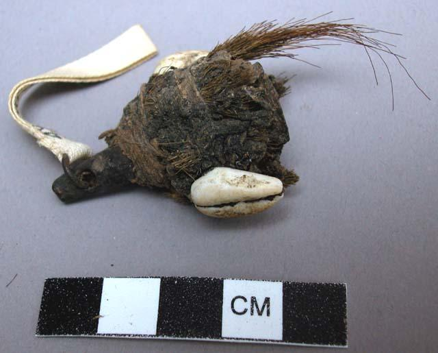 A medicine bundle from Mogdin, Liberia made of a small antelope horn with cowrie shells and fur attached.