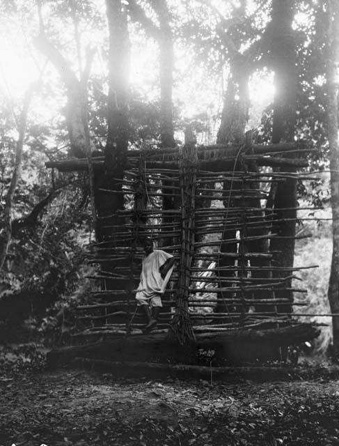 Steps up to a suspension bridge in Loffa, Liberia, 1929.