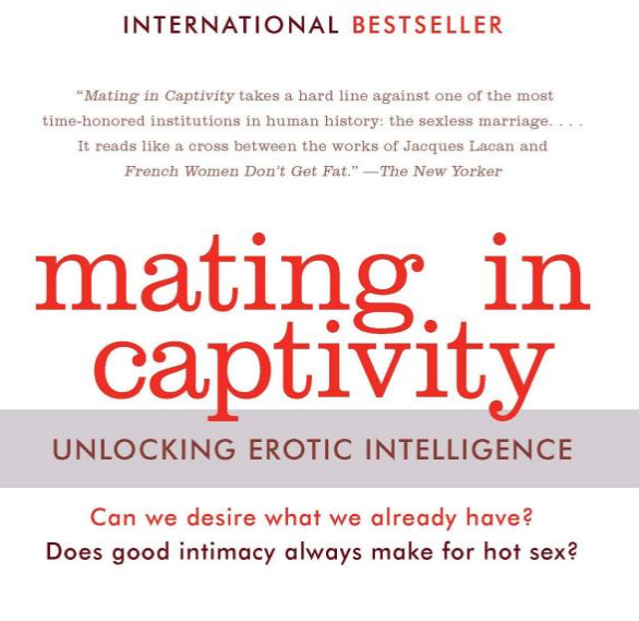 Book recommendation: Mating in Captivity: Unlocking Erotic Intelligence by Esther Perel