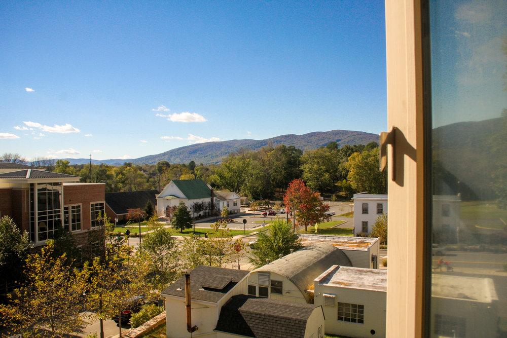Window Views-5.jpg