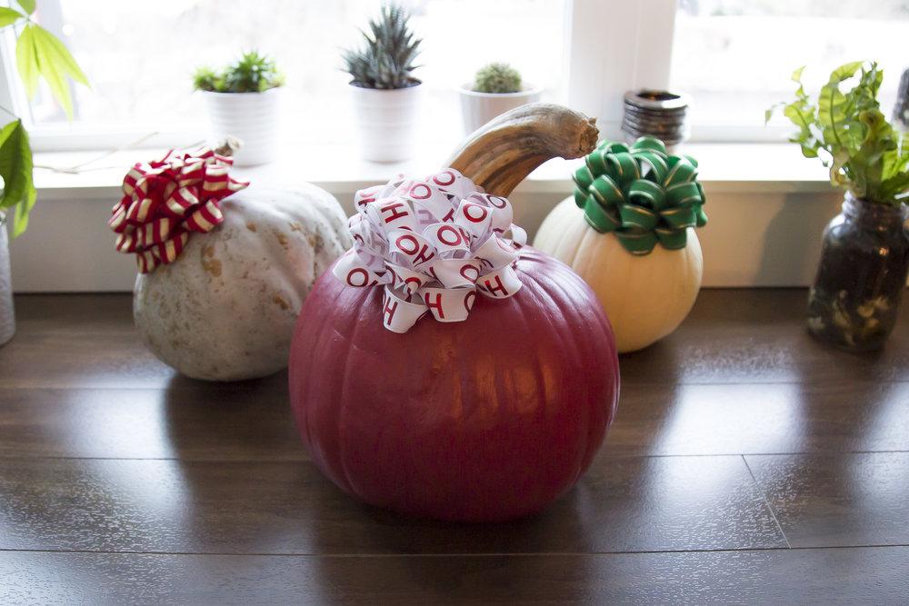 Pumpkins (1 of 2).jpg
