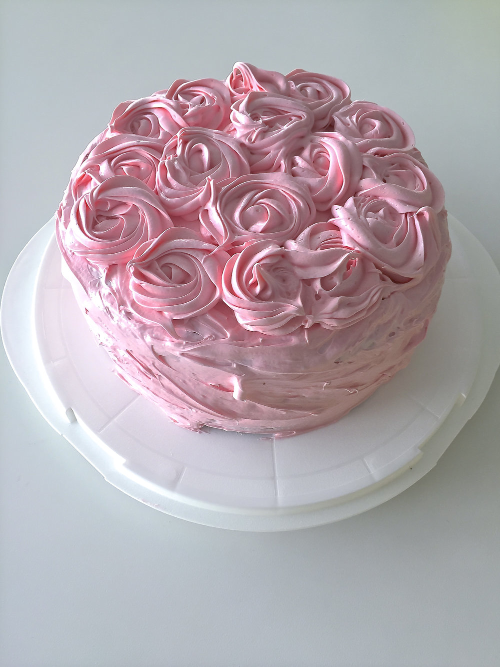 Pink Rose (2 of 3).jpg