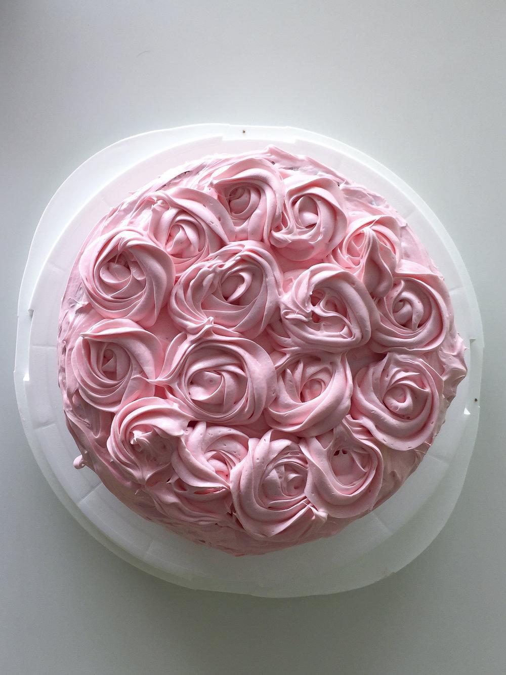Pink Rose (1 of 3).jpg