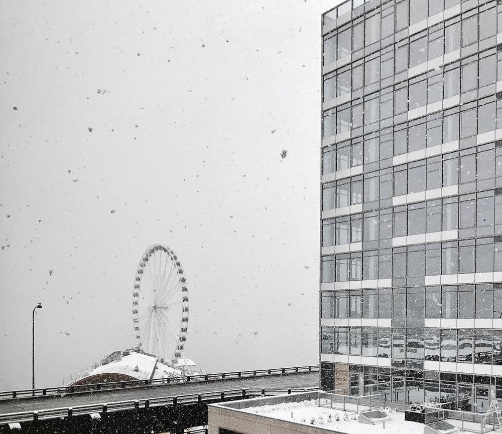 Snow (2 of 3).jpg