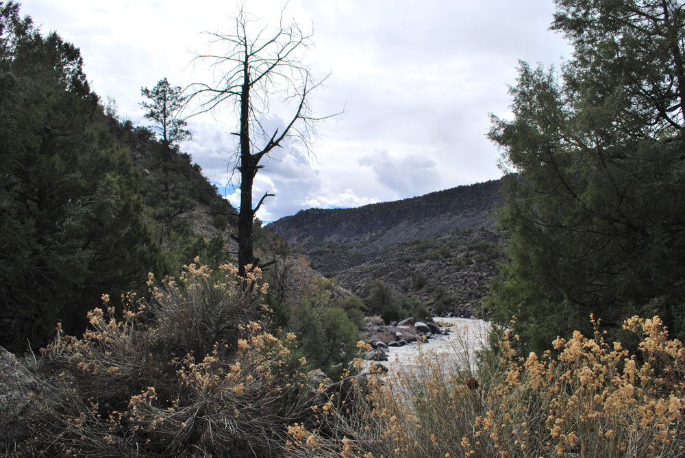 Taos Gorge. Rio Grande River. Photo By Zane White
