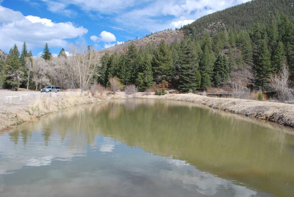 toxic ponds