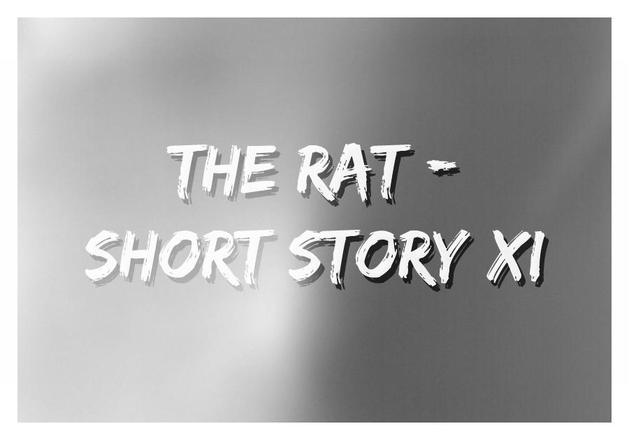 The Rat - Thumbnail