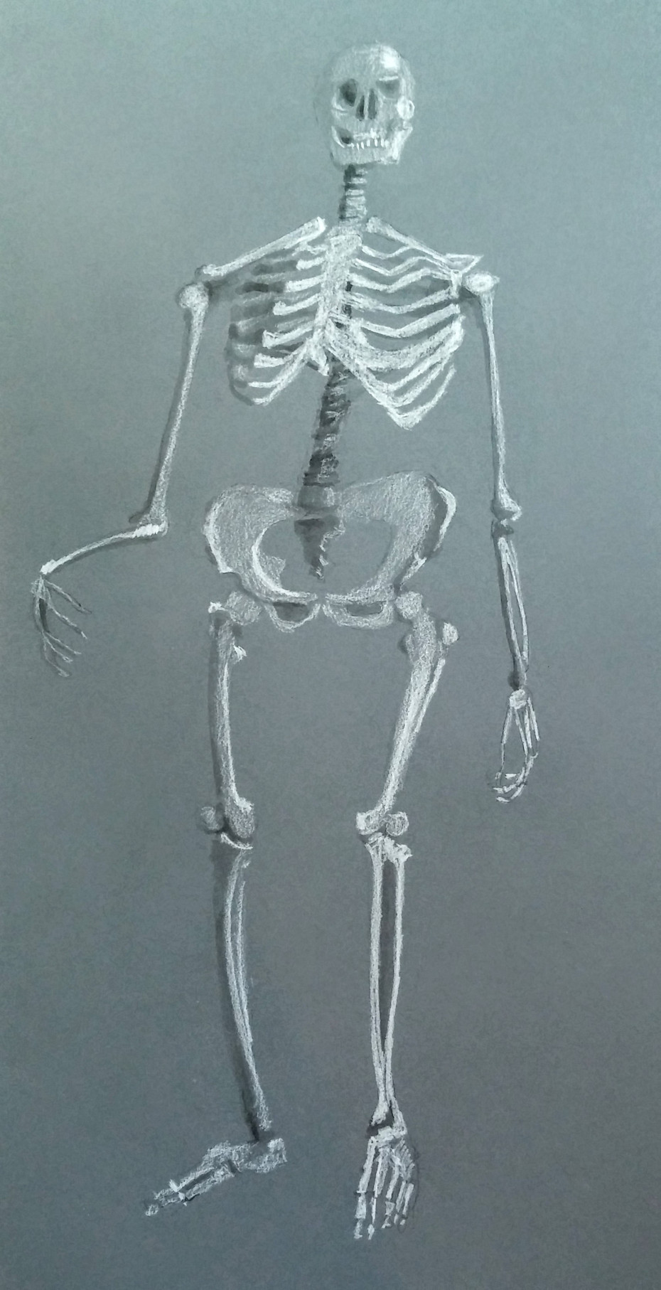 Hippy Skeleton.jpg
