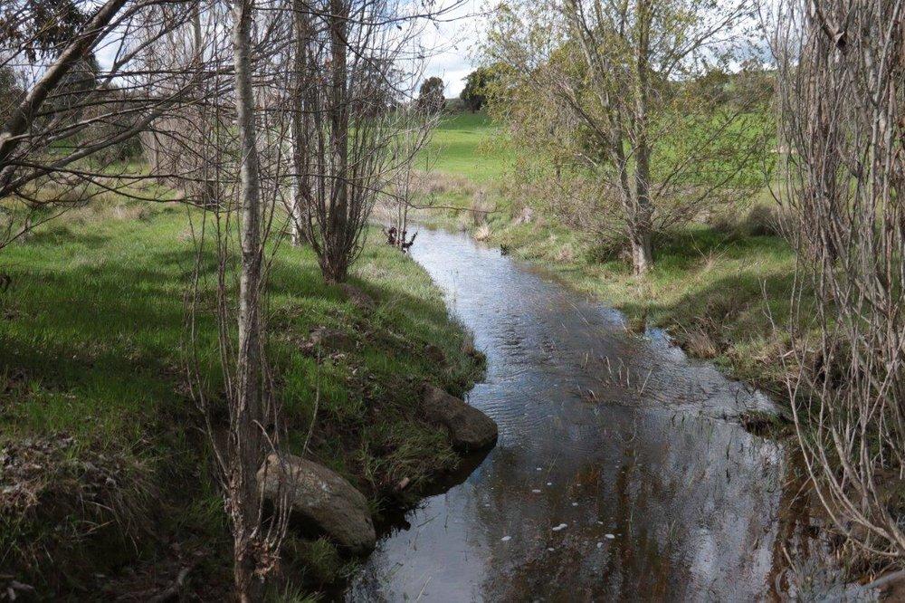 fenced off stream