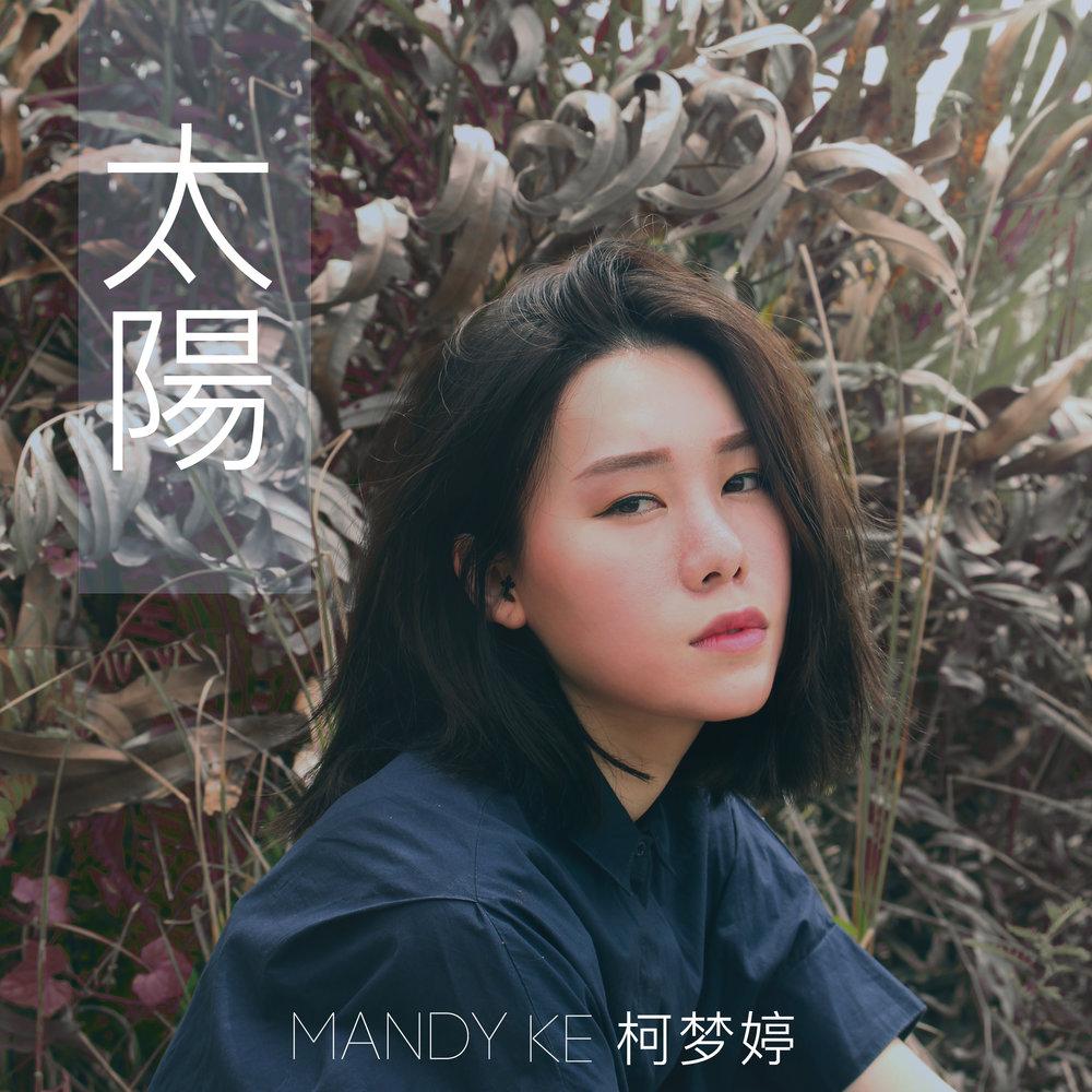 太阳 Tai Yang (Flashlight) - Single (2016)