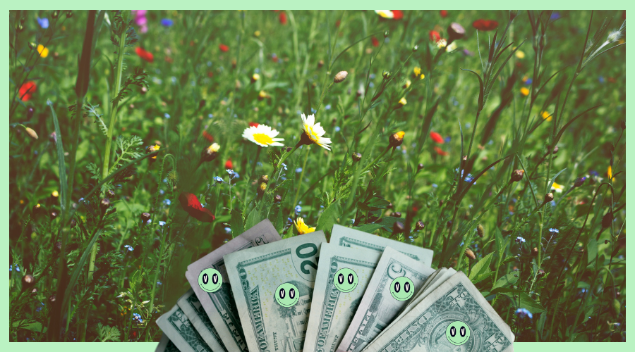 A Bunch of Savings Tips for Spring
