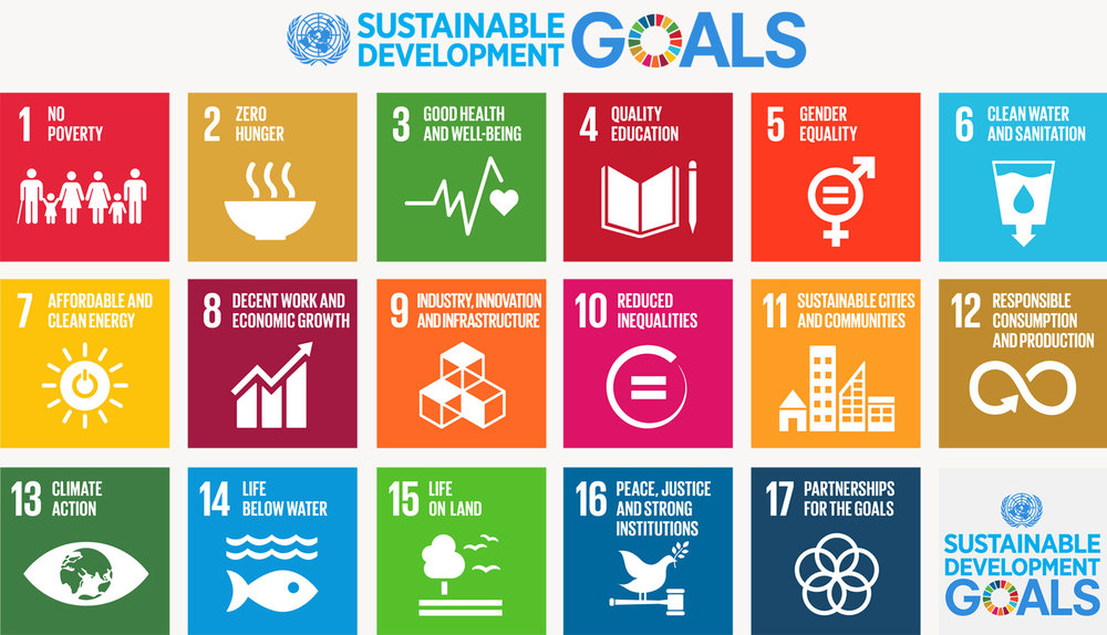The UN's Sustainable Development Goals (SDGs)