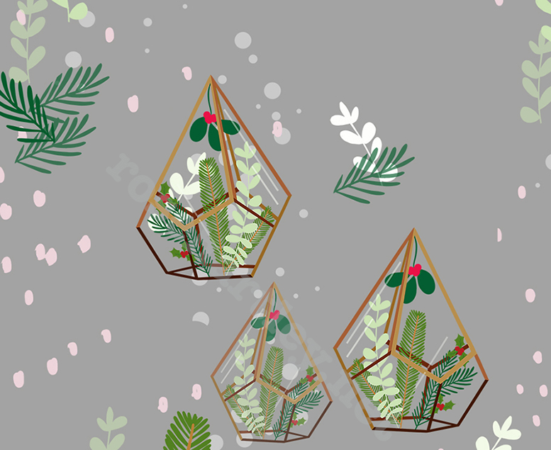 Another patterned illustration I created inspired by the geometric glass Terrarium's that are currently on trend, these housing christmas plants.