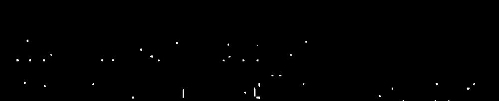 Kammer sort.png