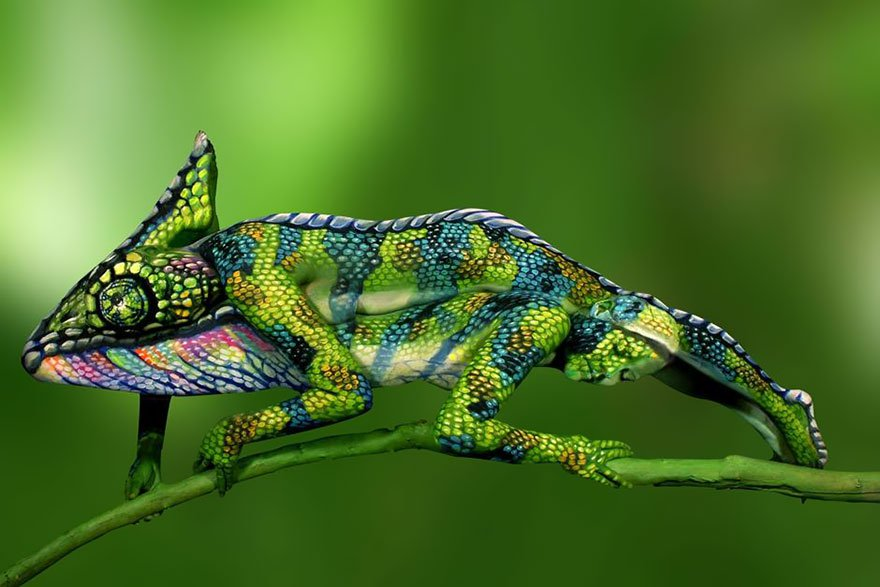 It's a photo of two persons on top of each other painted like a chameleon. See it now?