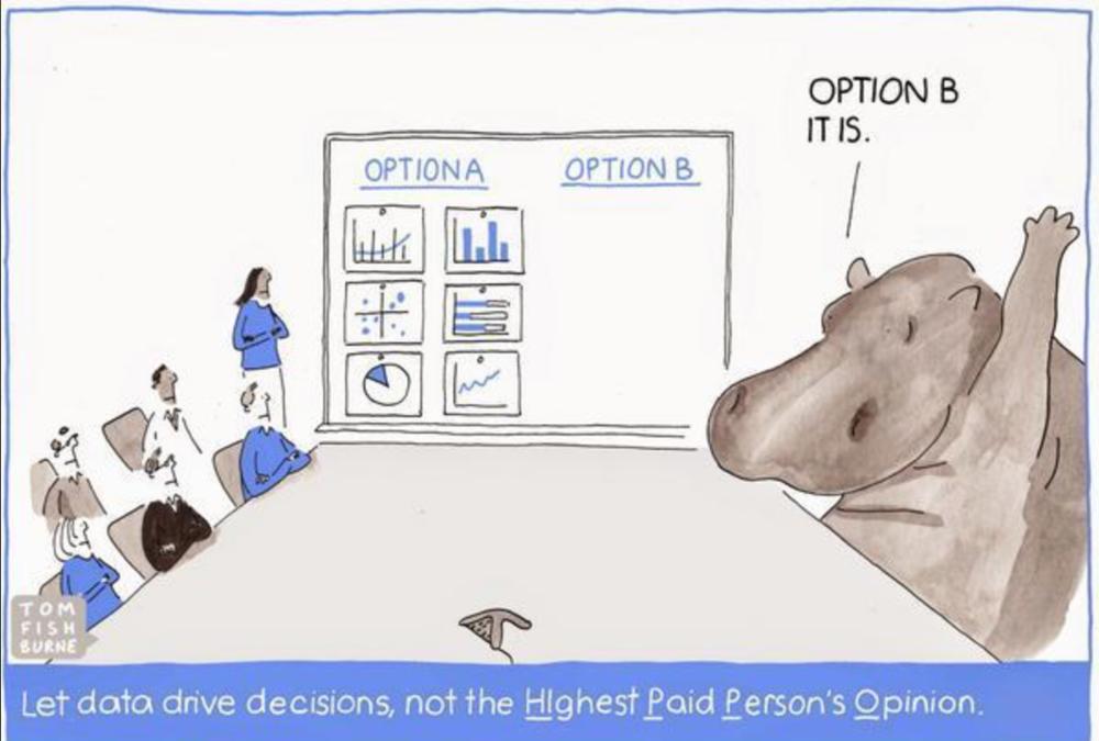 Social Media Data | Hippo