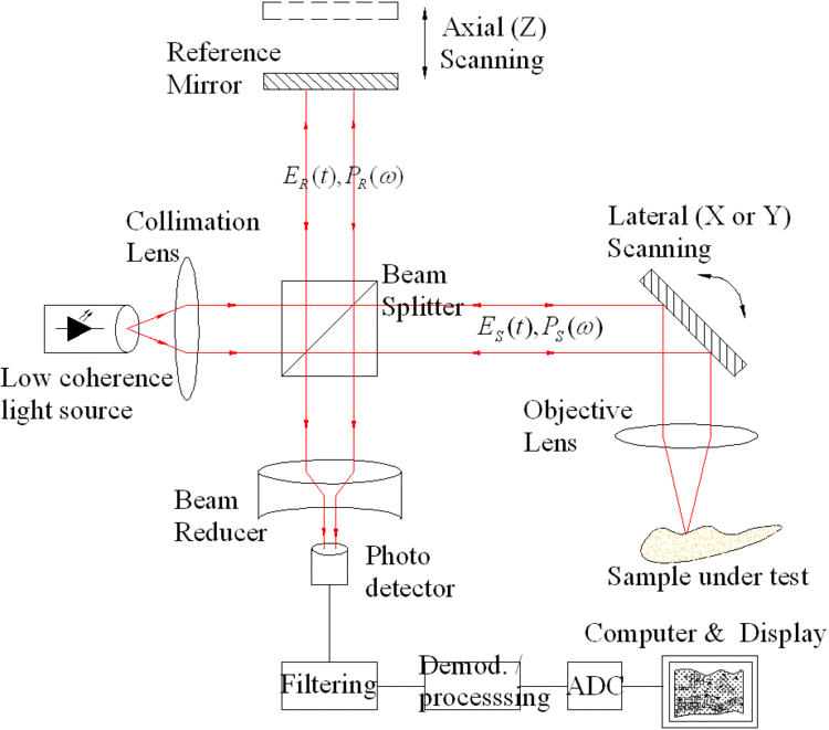 Typical optical setup of single point OCT. Scanning the light beam on the sample enables non-invasive cross-sectional imaging up to 3 mm in depth with micrometer resolution. Image Credit:  https://en.wikipedia.org/wiki/Optical_coherence_tomography#Theory