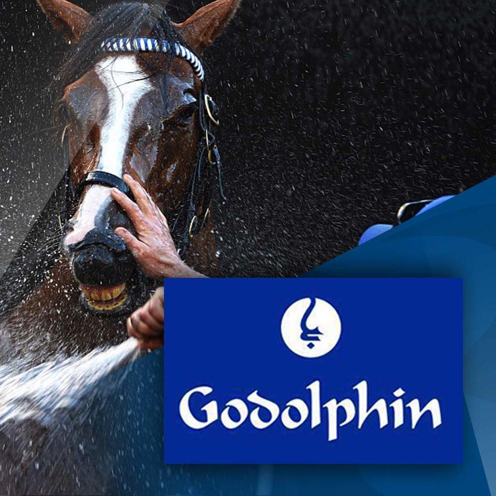 Godolphin thumb LOGO ONLY.jpg
