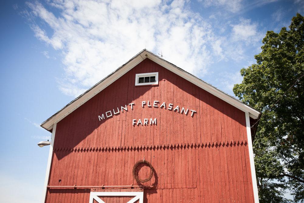 The Inn at Mount Pleasant Wedding Photos
