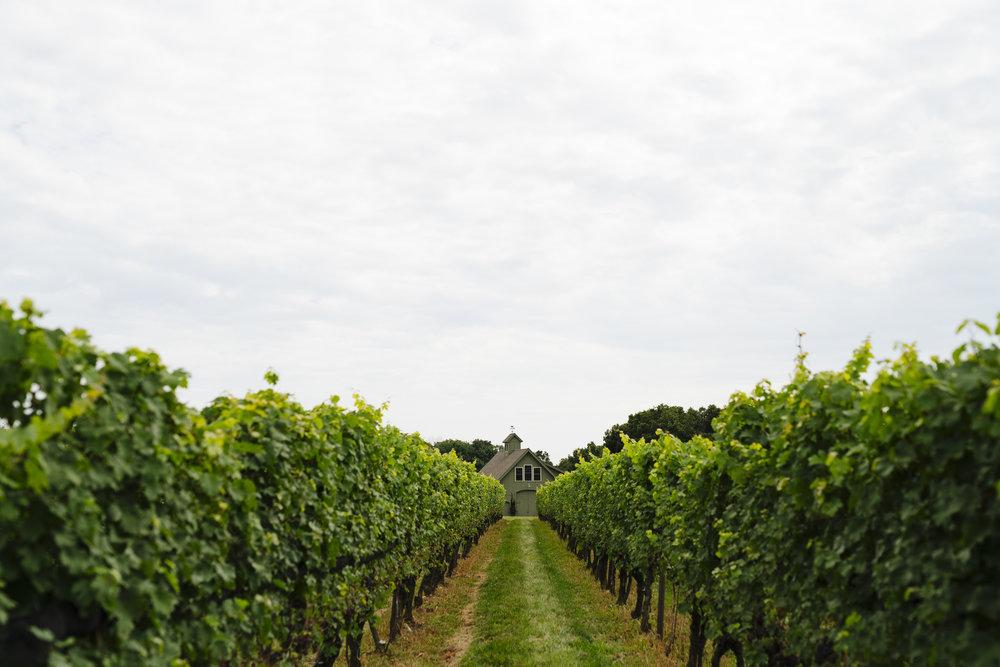 Jonathan Edwards Winery Wedding Photos - Pearl Weddings & Events