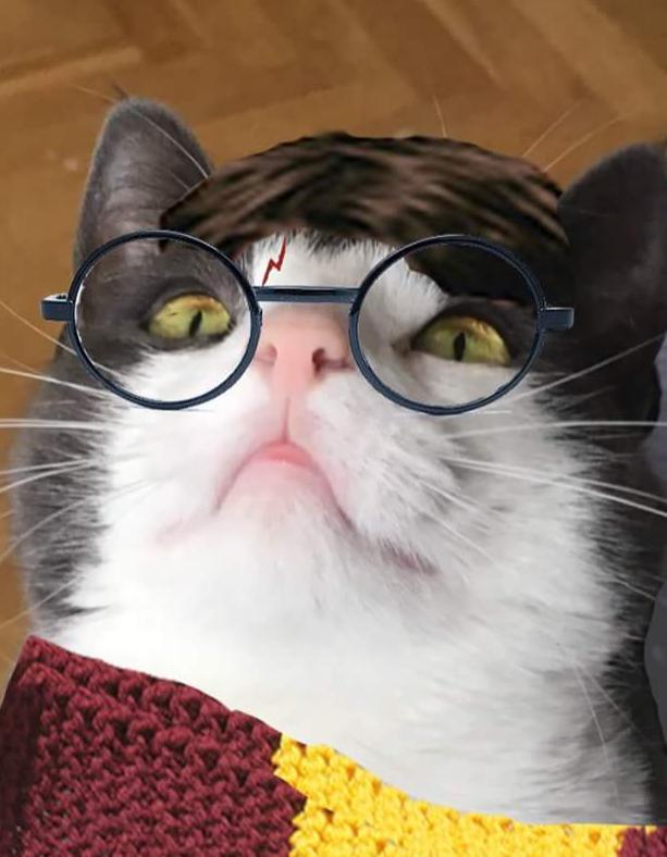 Västen Potter annonsformat.png