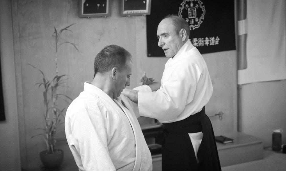 Blog — Daito Ryu Aiki Jujutsu