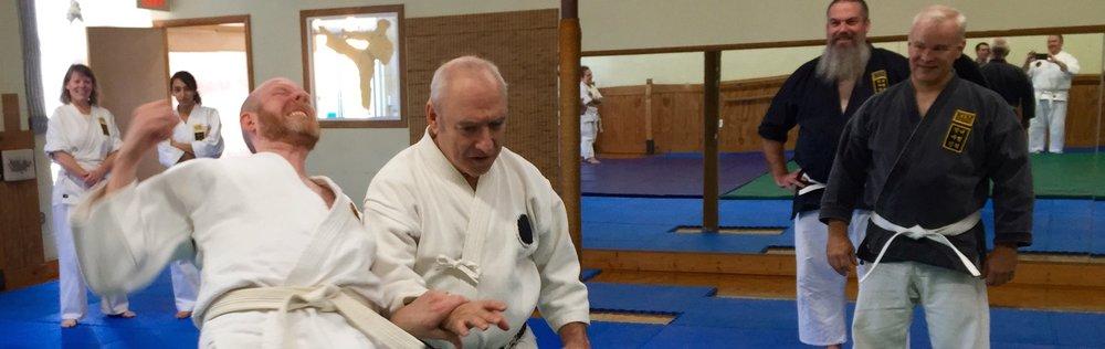 Roy Goldberg Daito Ryu Kodokai.jpg