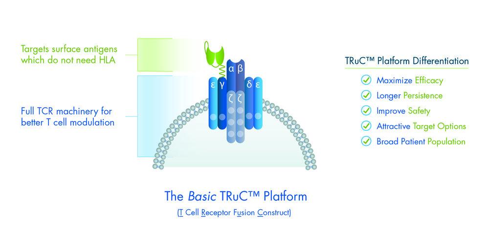 BasicTRcCPlatform_3.20.jpg