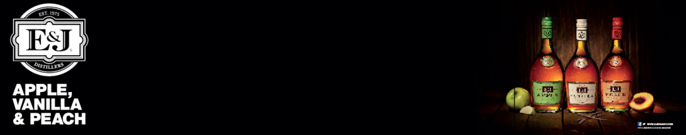 4x20 Custom Banner