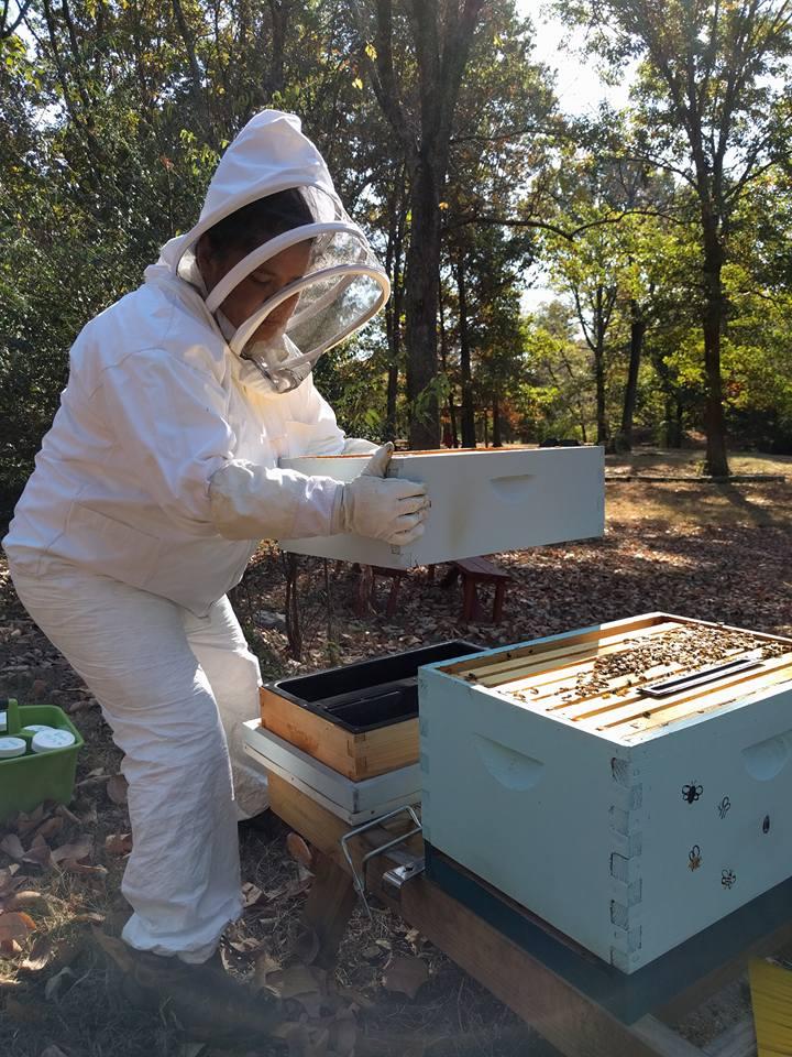 monica bee inspection.jpg