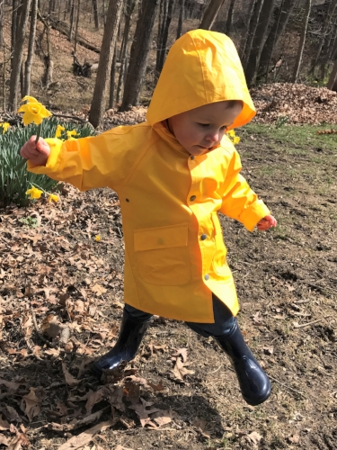 Daffodil Days!