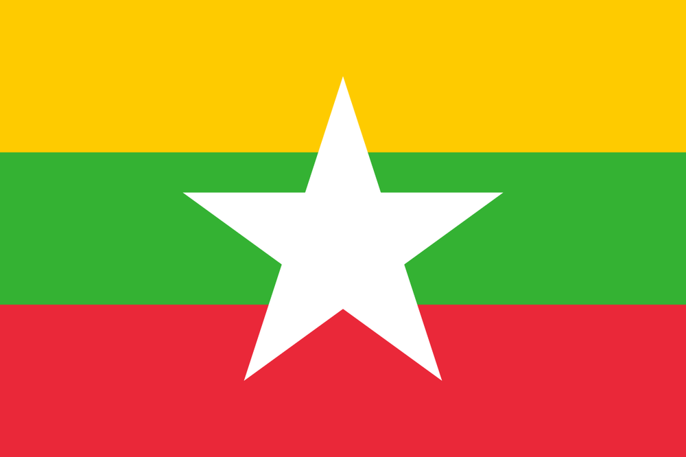 Burmese Pro-Democracy Movement   Dr. Williams provided legal assistance to the National Council of the Union of Burma on the use of international legal mechanisms to challenge the legitimacy of the ruling military junta