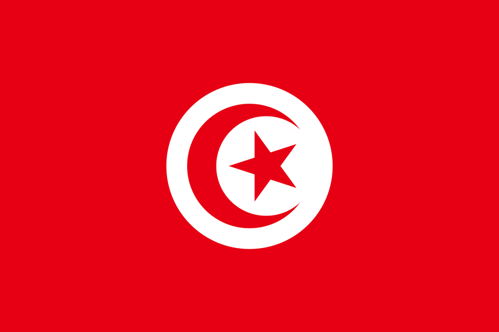 Tunisia   Dr. Williams provided legal assistance to Tunisian political party and civil society leaders to support the democratic transition process, including matters relating to constitution drafting and transitional justice.