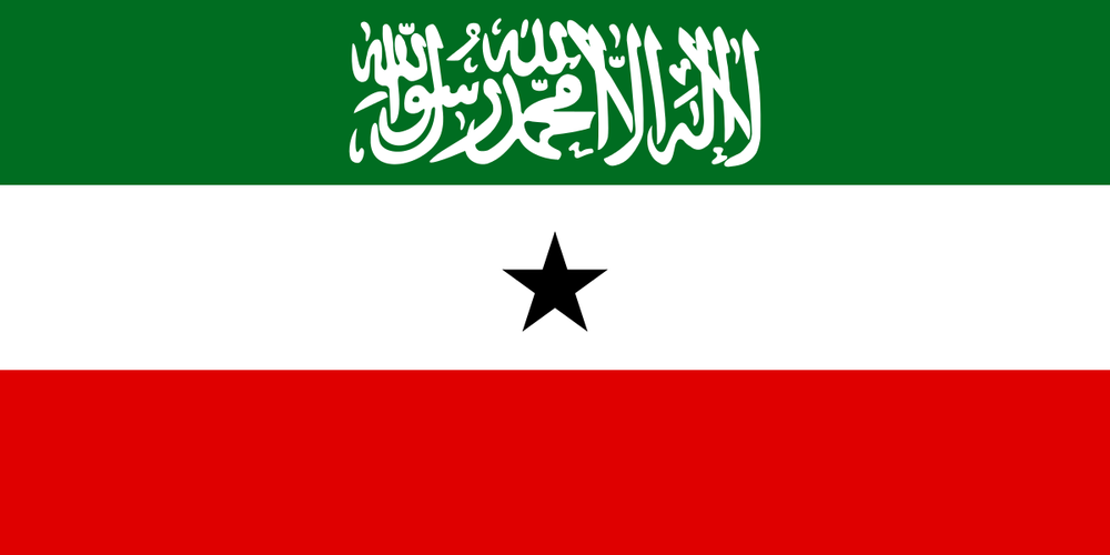 Somaliland   Dr. Williams advised the Somaliland government on a variety of legal issues pertaining to constitutional reform and legislative enactments.