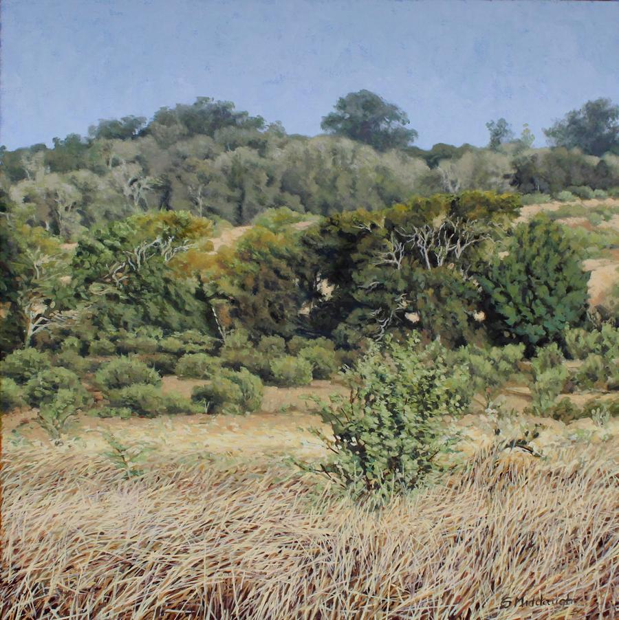 hillside-trees.jpg