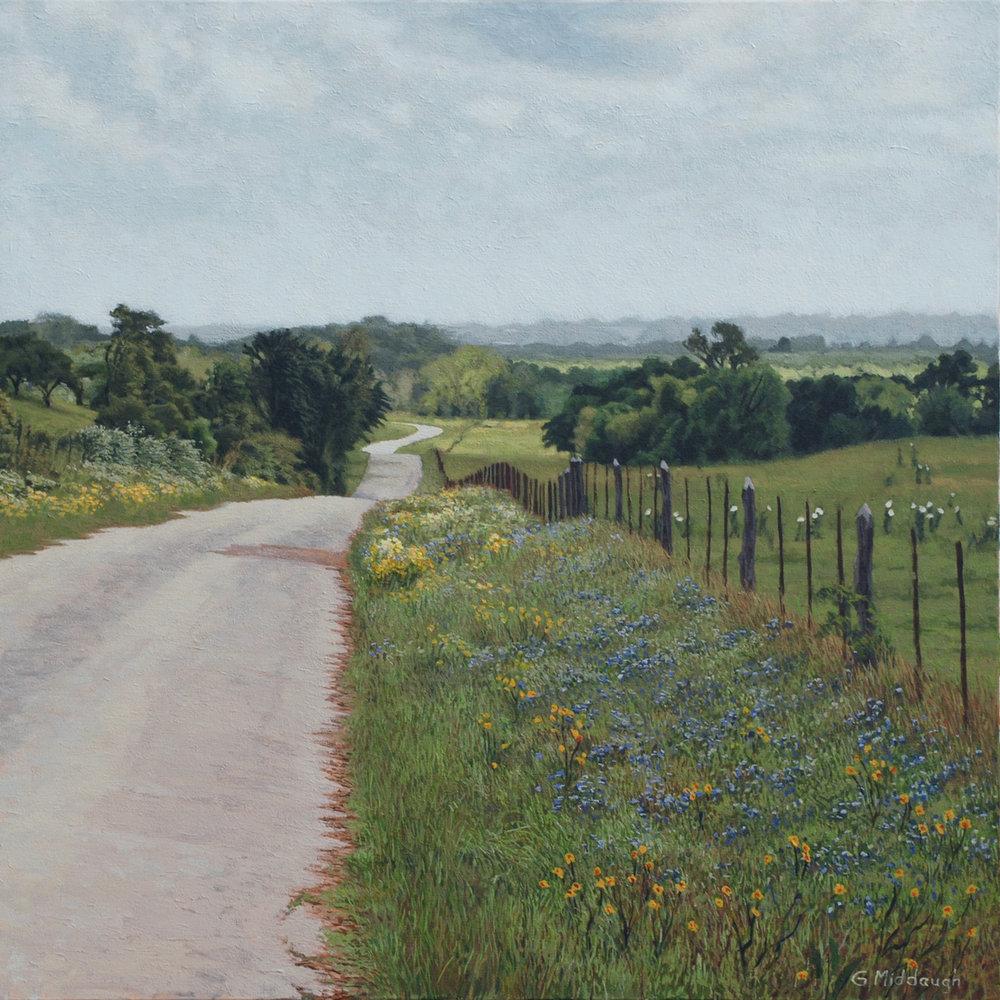 spring, nicholson lake road