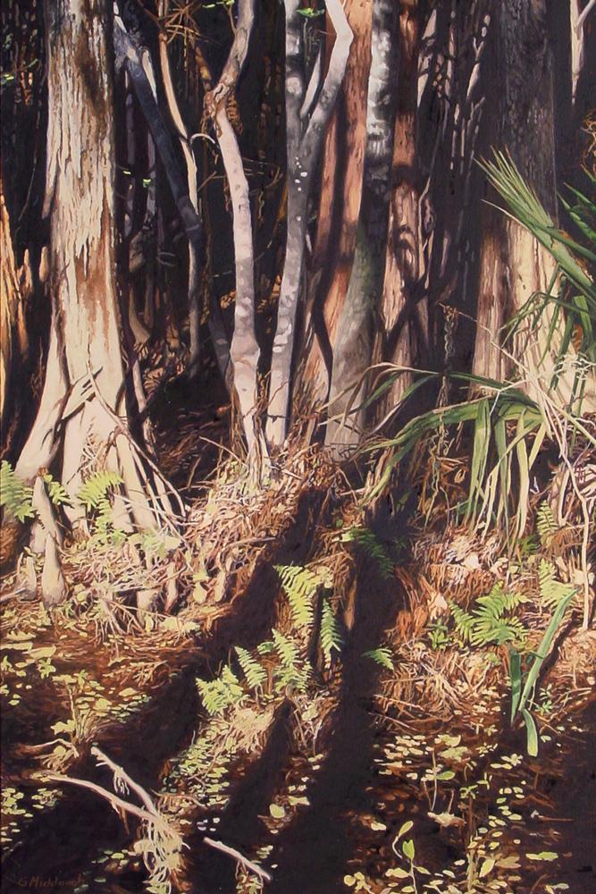 swampsunlight