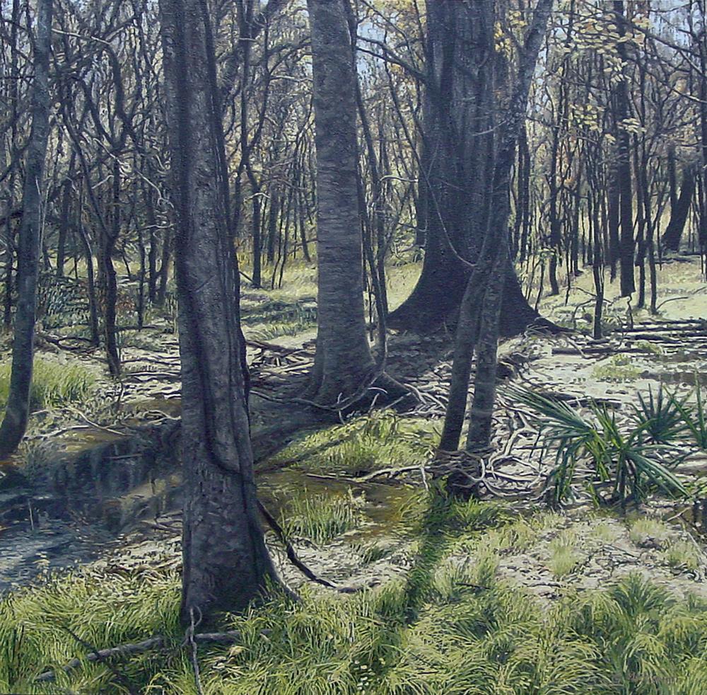 houston wetland