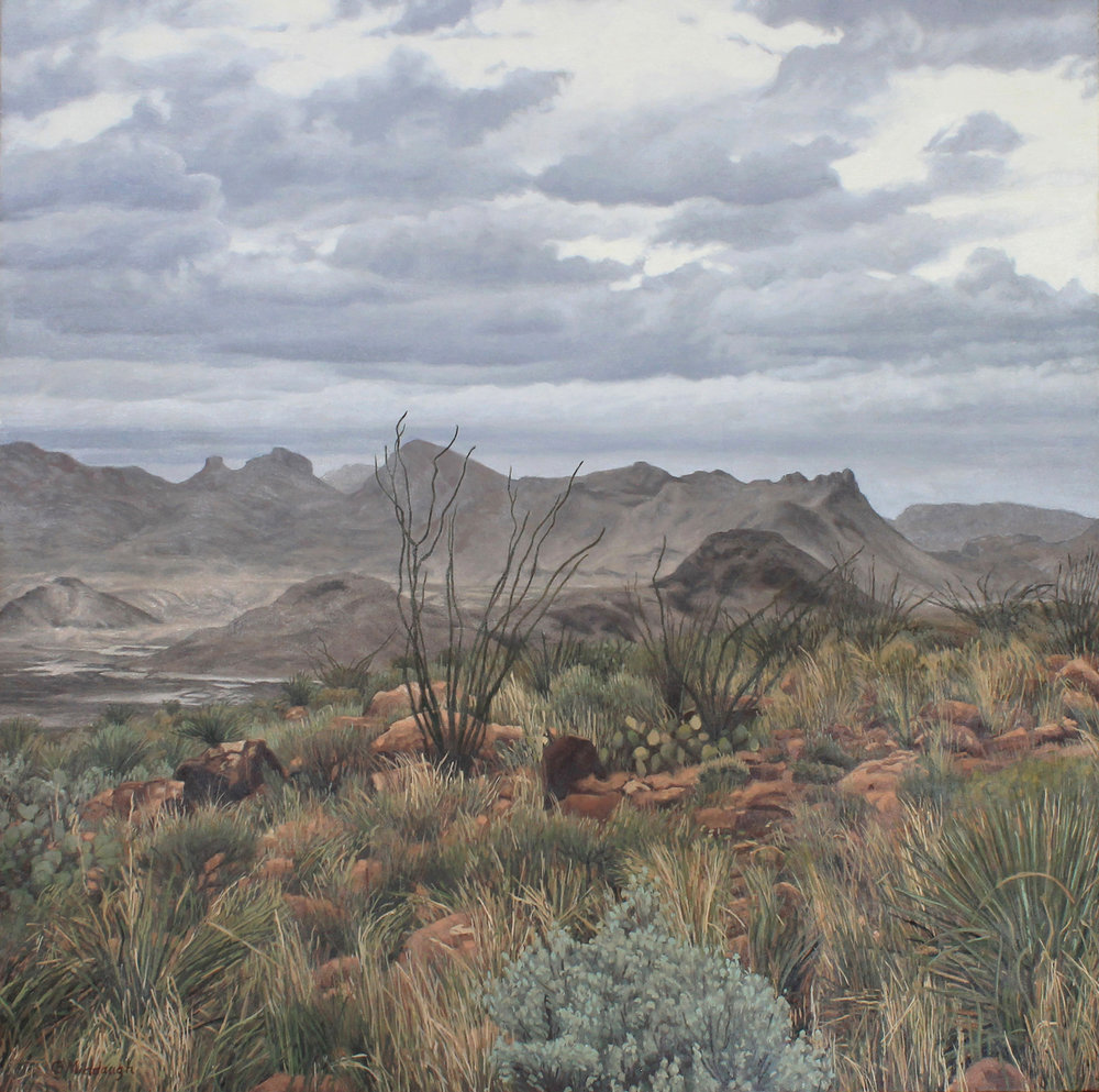 grapevine hills, winter, BBNP